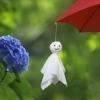 rainy,wet,seasonal